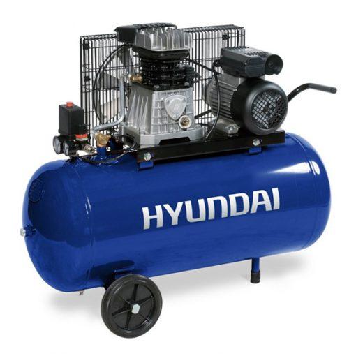 HYACB100-31